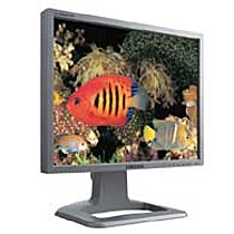 "Samsung 21""LCD, 214T, 300cd/m2, 900:1, 25ms, pivot"