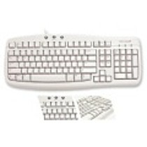 Microsoft Basic Keyboard PS/2 EN