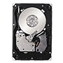Seagate Cheetah 15K.6 450GB HDD, SAS (Serial Attached SCSI), 15000RPM,16MB