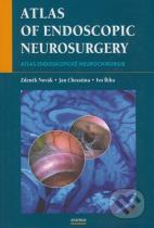 Zdeněk Novák, Jan Chrastina, Ivo Říha: Atlas of Endoscopic Neurosurgery