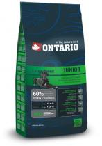 Ontario Junior Large 13kg