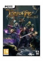 Bards Tale IV (PC)