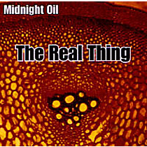 Midnight Oil: Real Thing