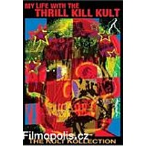 MY LIFE WITH THE THRILL KILL K:  GAY, BLACK AND MARRIED