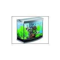 Akv ria tetra for Waterhome aquarium