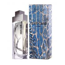 Roberto Cavalli Man EdT 100 ml M